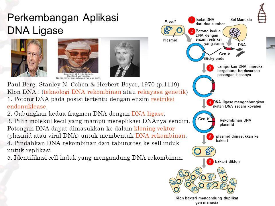 Perkembangan Aplikasi DNA Ligase