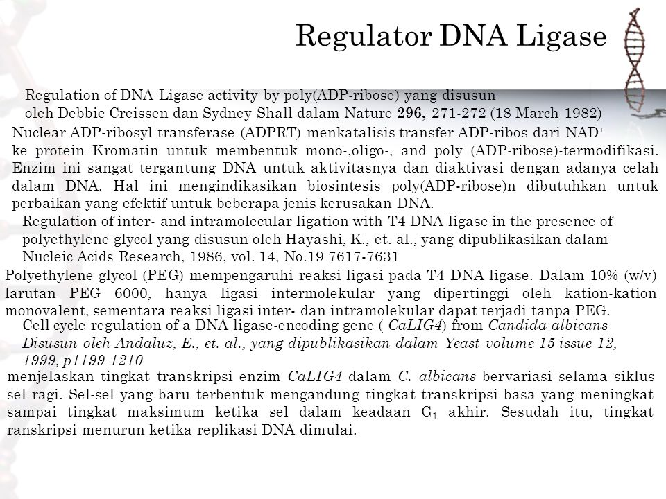 Regulator DNA Ligase Regulation of DNA Ligase activity by poly(ADP-ribose) yang disusun.
