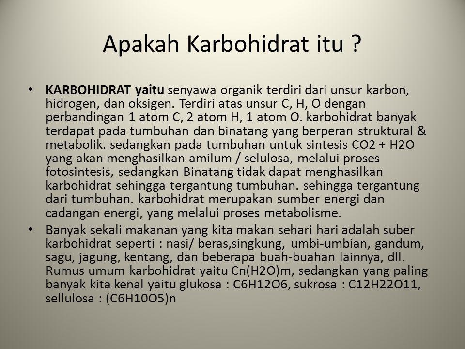 Apakah Karbohidrat itu
