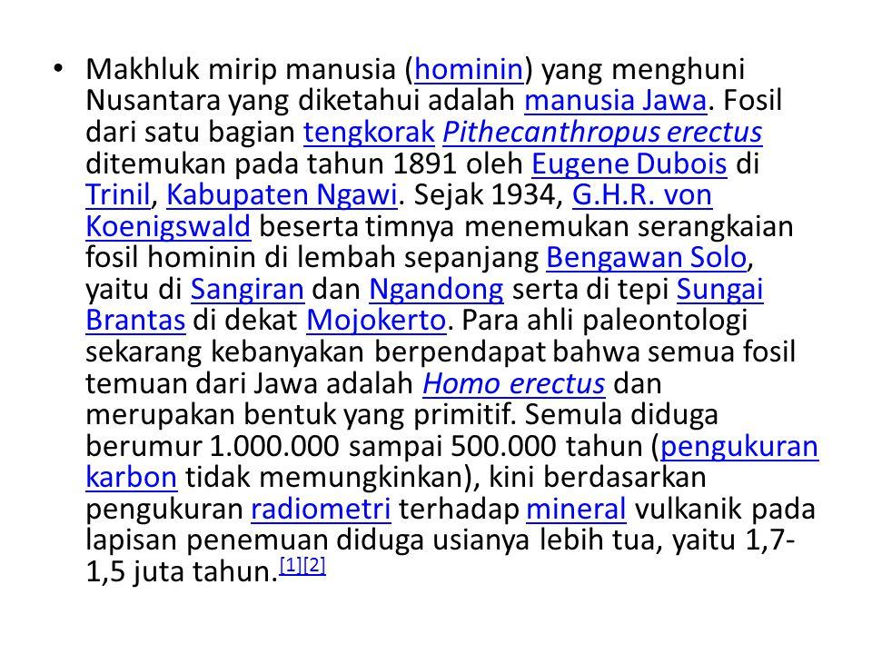 Makhluk mirip manusia (hominin) yang menghuni Nusantara yang diketahui adalah manusia Jawa.