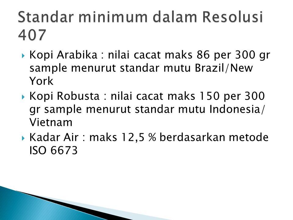 Standar minimum dalam Resolusi 407