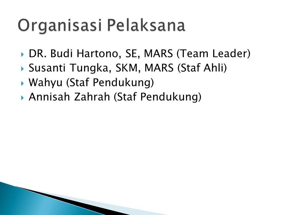 Organisasi Pelaksana DR. Budi Hartono, SE, MARS (Team Leader)