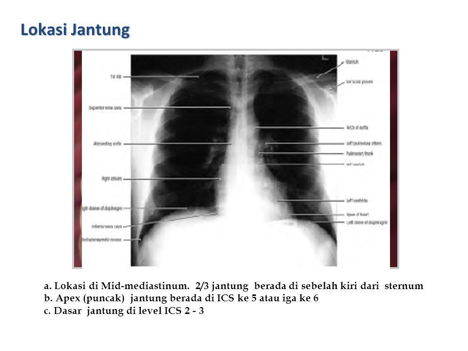 Lokasi Jantung 2nd – 3rd ICS 5th – 6th ICS