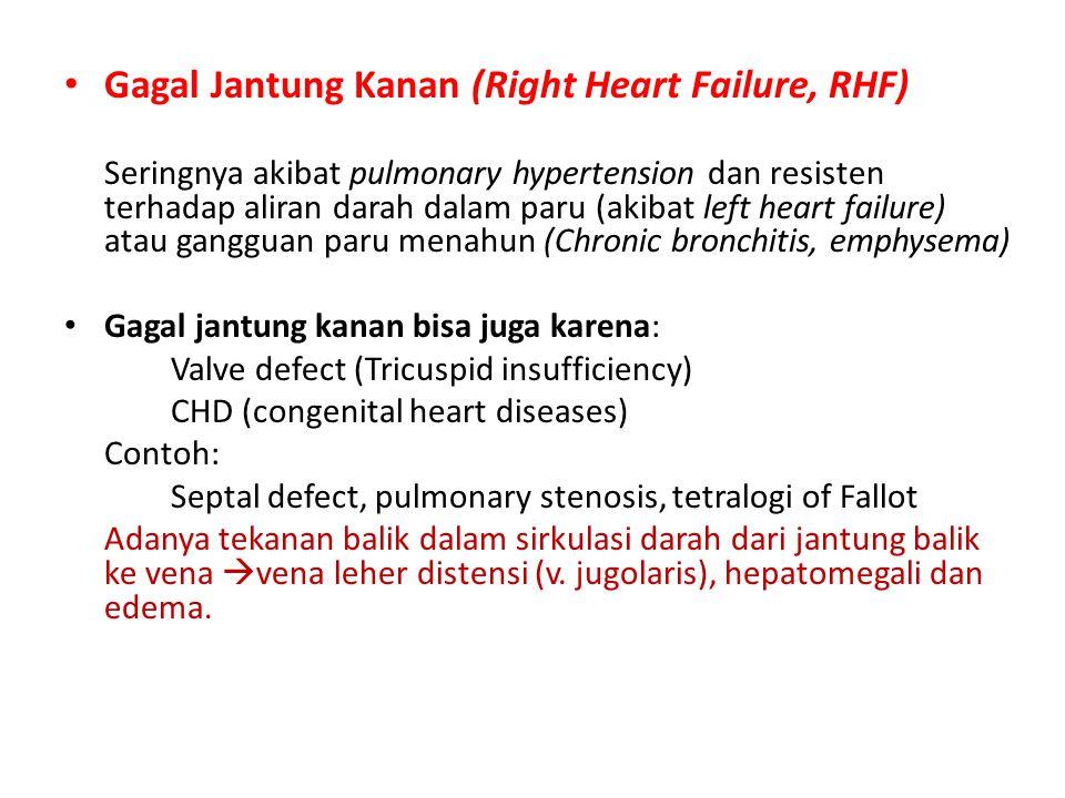 Gagal Jantung Kanan (Right Heart Failure, RHF)