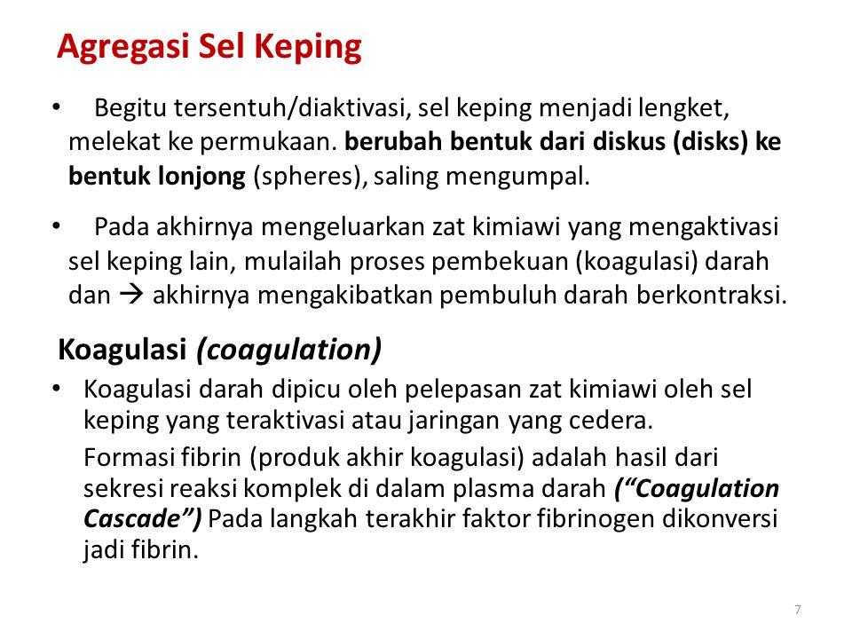 Koagulasi (coagulation)