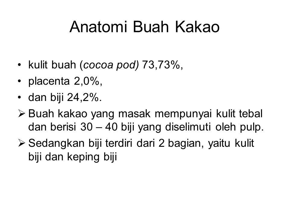 Anatomi Buah Kakao kulit buah (cocoa pod) 73,73%, placenta 2,0%,