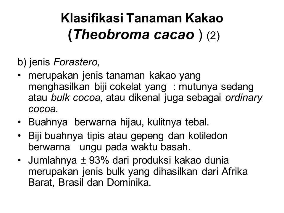 Klasifikasi Tanaman Kakao (Theobroma cacao ) (2)