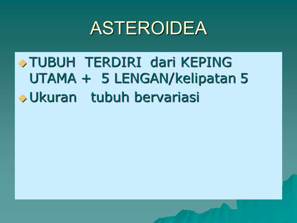 ASTEROIDEA TUBUH TERDIRI dari KEPING UTAMA + 5 LENGAN/kelipatan 5