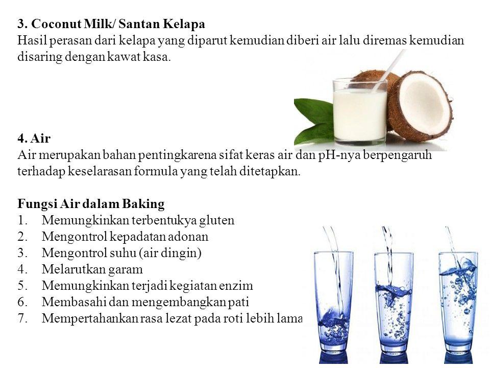 3. Coconut Milk/ Santan Kelapa