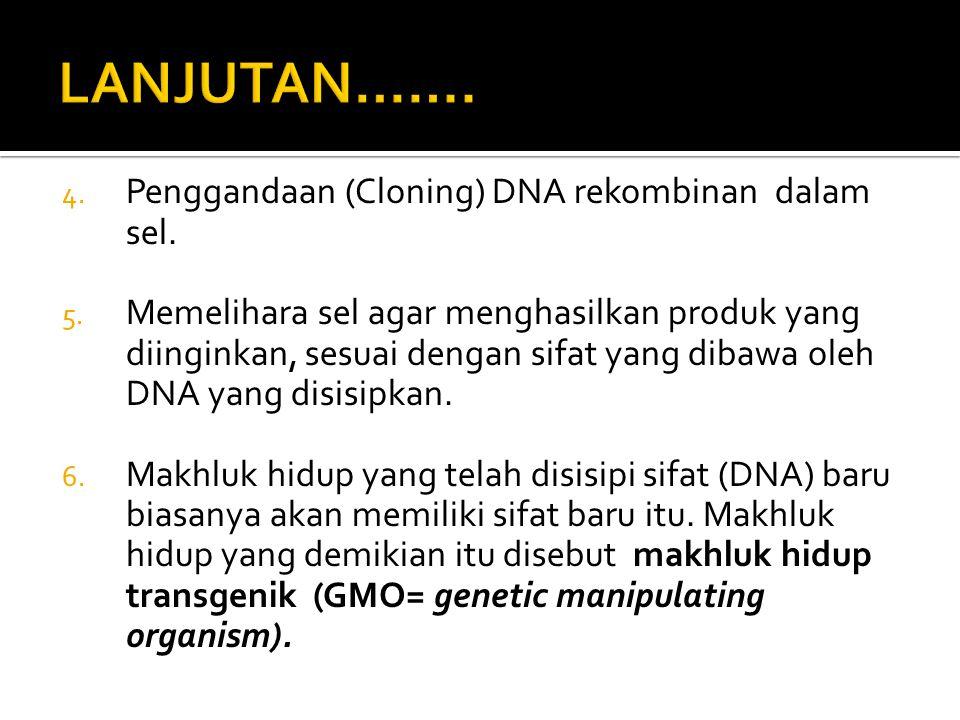 LANJUTAN……. Penggandaan (Cloning) DNA rekombinan dalam sel.