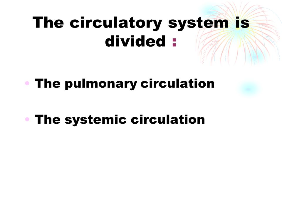 The circulatory system is divided :