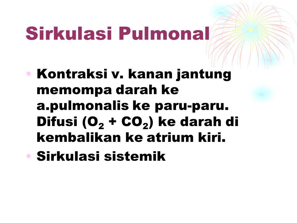 Sirkulasi Pulmonal Kontraksi v. kanan jantung memompa darah ke a.pulmonalis ke paru-paru. Difusi (O2 + CO2) ke darah di kembalikan ke atrium kiri.