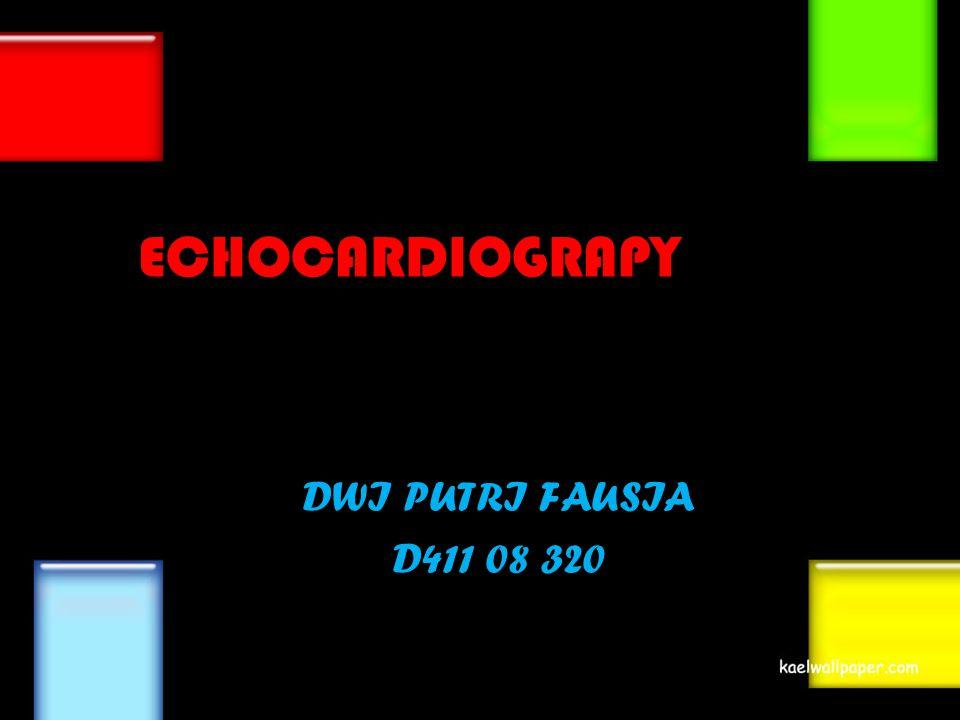 EECHOCARDIOGRAPY DWI PUTRI FAUSIA D411 08 320