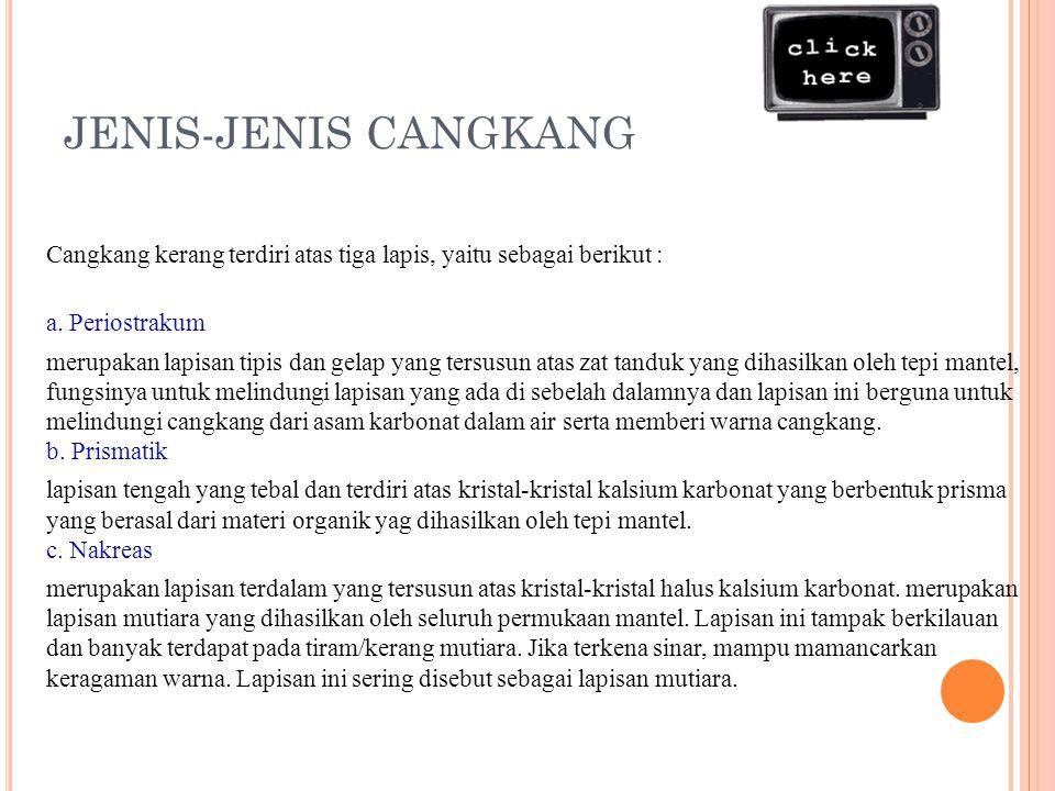 JENIS-JENIS CANGKANG