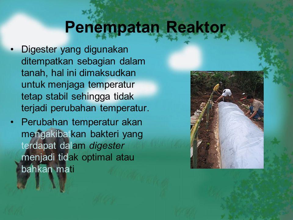 Penempatan Reaktor