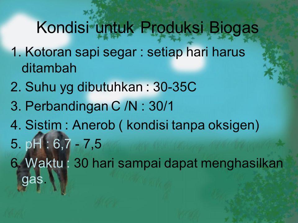 Kondisi untuk Produksi Biogas