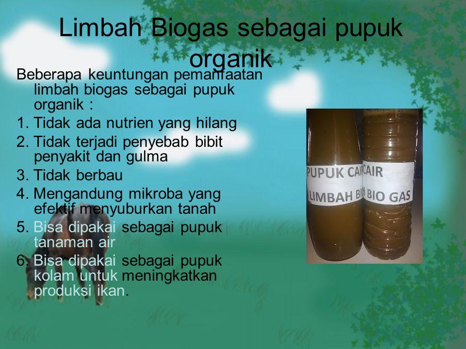 Limbah Biogas sebagai pupuk organik