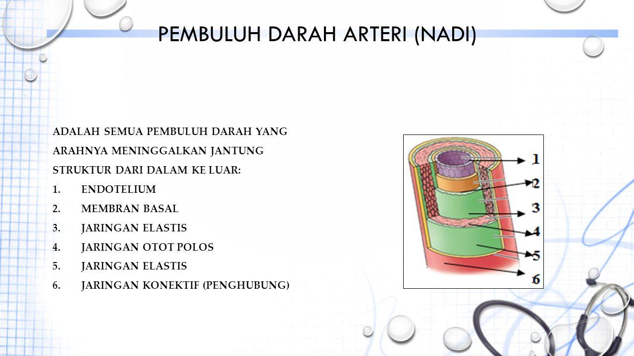 Pembuluh darah arteri (nadi)