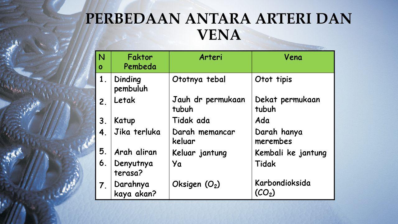 Perbedaan antara Arteri dan Vena