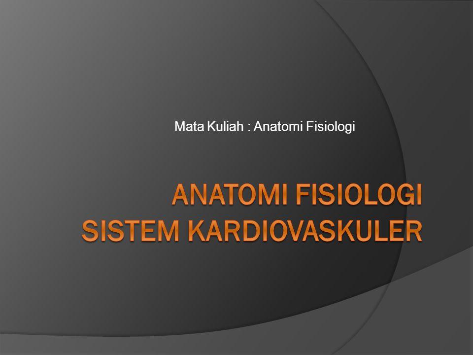 ANATOMI FISIOLOGI SISTEM KARDIOVASKULER