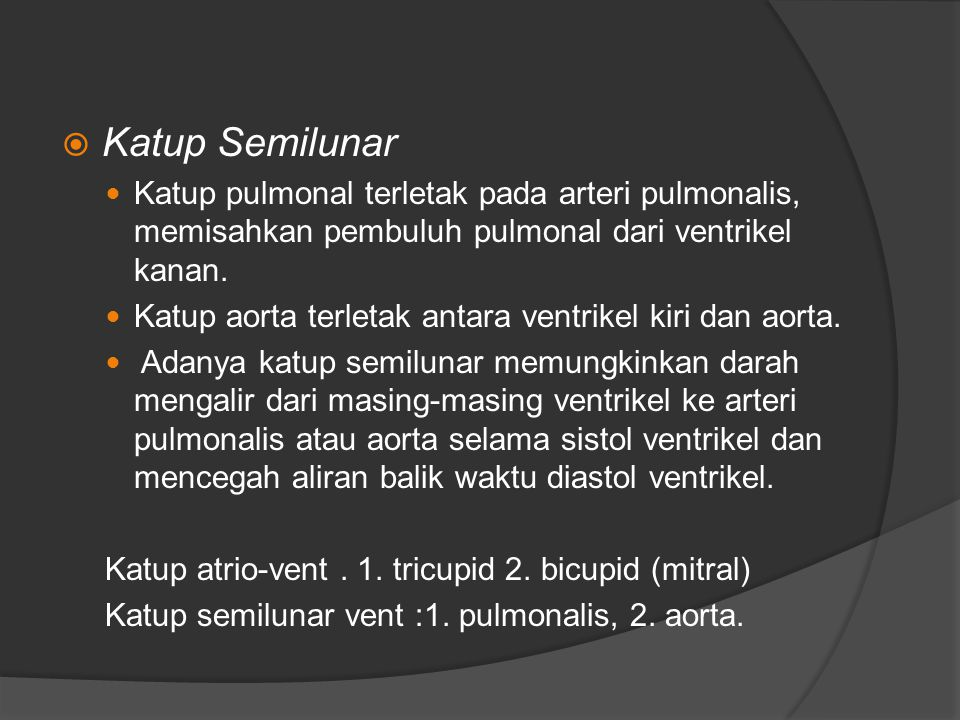Katup Semilunar Katup pulmonal terletak pada arteri pulmonalis, memisahkan pembuluh pulmonal dari ventrikel kanan.