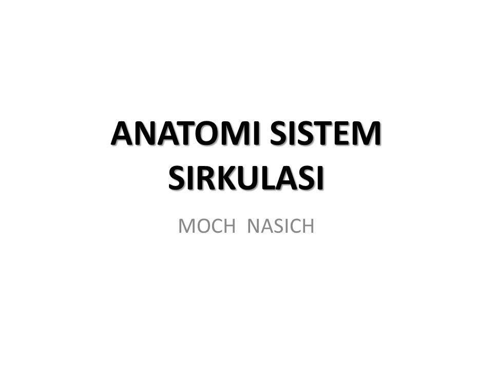 ANATOMI SISTEM SIRKULASI