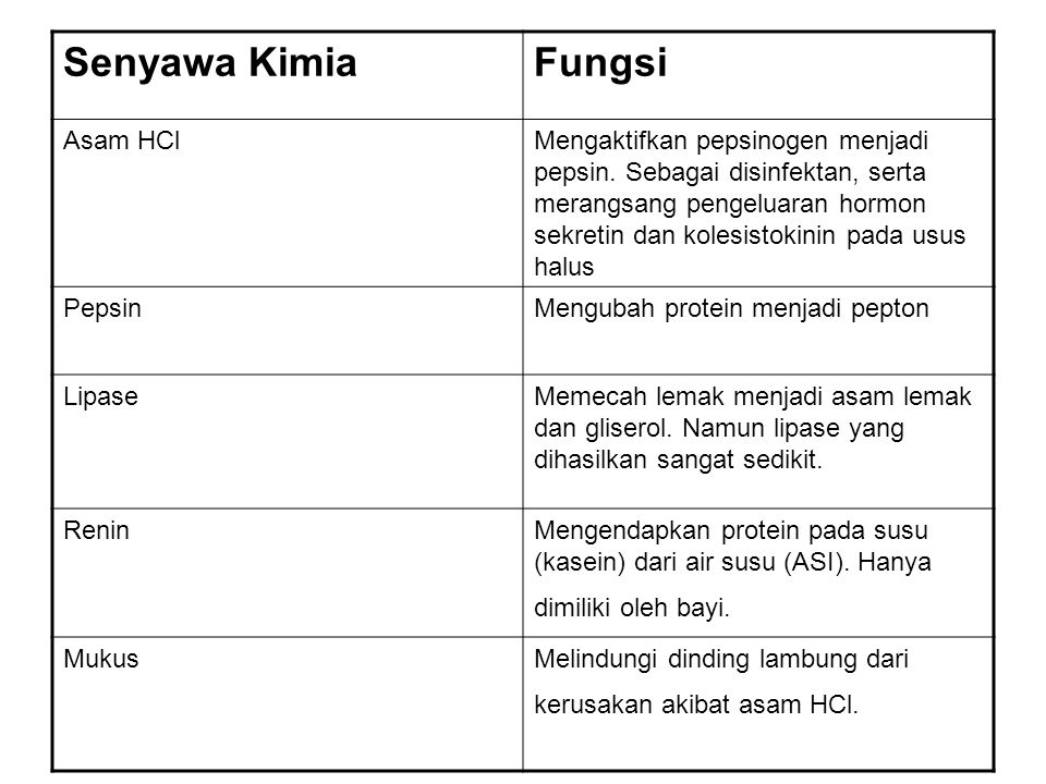 Senyawa Kimia Fungsi Asam HCl