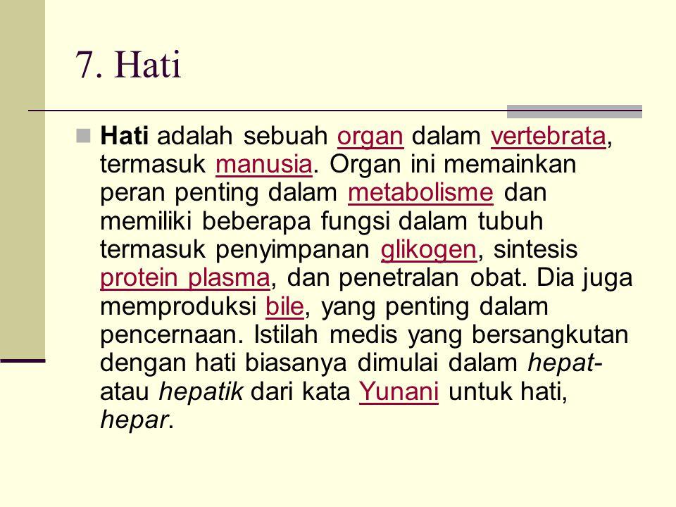 7. Hati