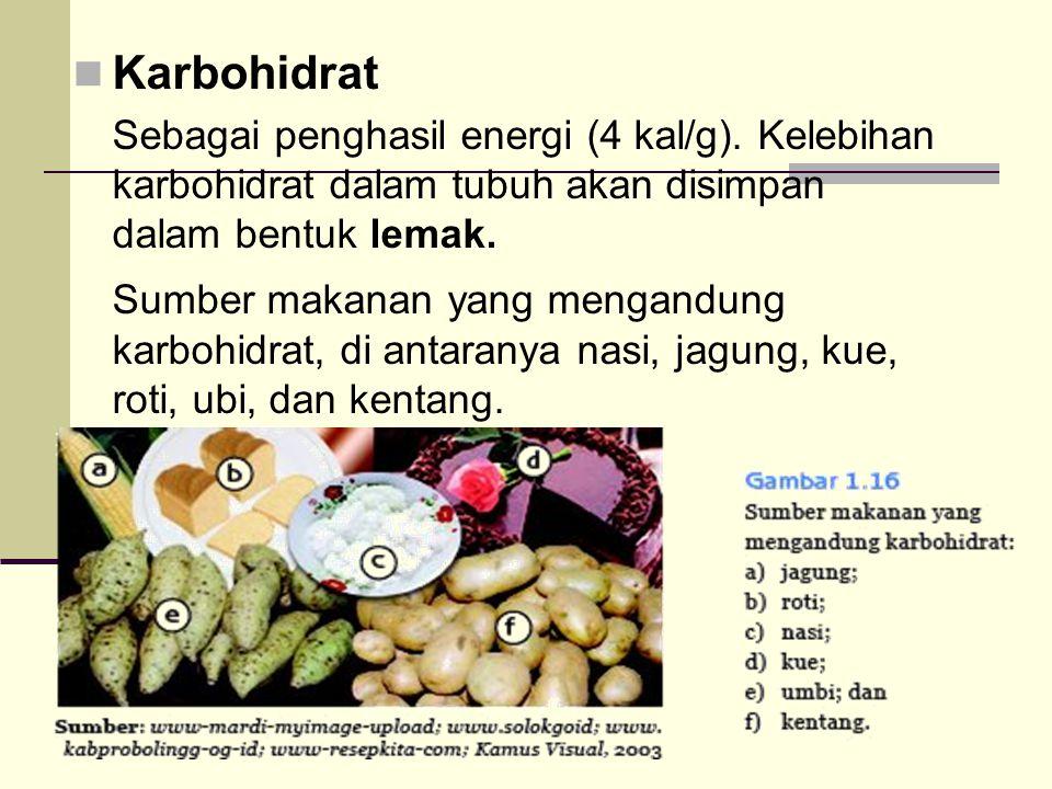 Karbohidrat Sebagai penghasil energi (4 kal/g). Kelebihan karbohidrat dalam tubuh akan disimpan dalam bentuk lemak.