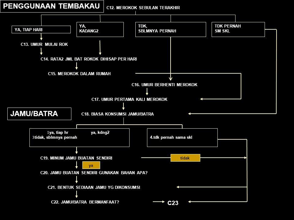 PENGGUNAAN TEMBAKAU JAMU/BATRA C23 C12. MEROKOK SEBULAN TERAKHIR