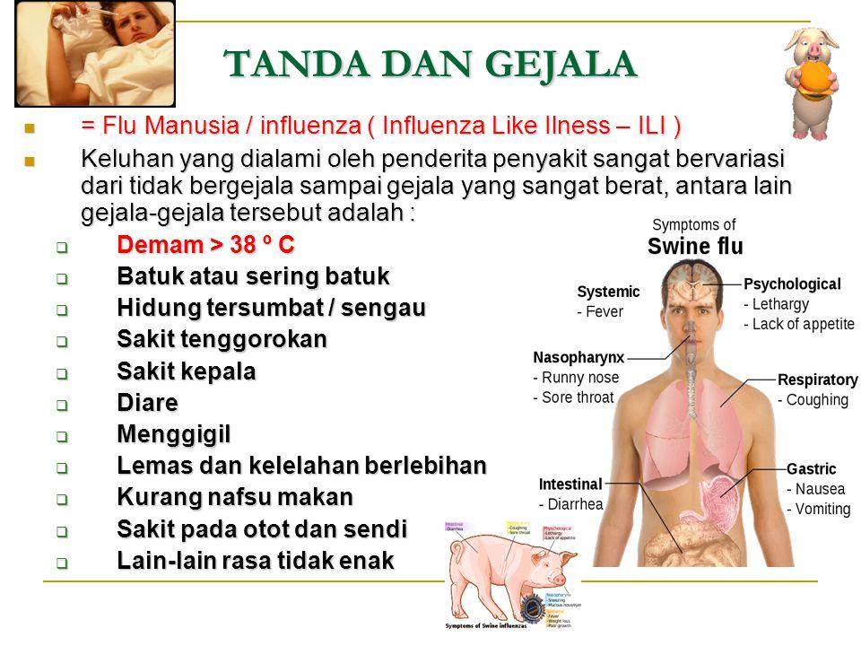 TANDA DAN GEJALA = Flu Manusia / influenza ( Influenza Like Ilness – ILI )