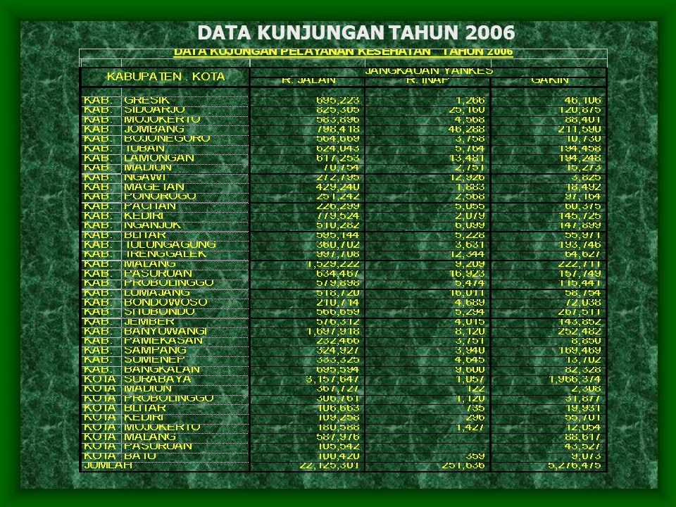DATA KUNJUNGAN TAHUN 2006