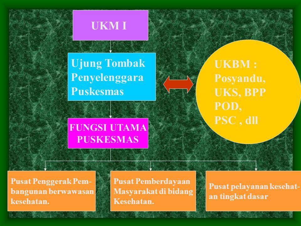 UKM I UKBM : Ujung Tombak Posyandu, Penyelenggara UKS, BPP Puskesmas