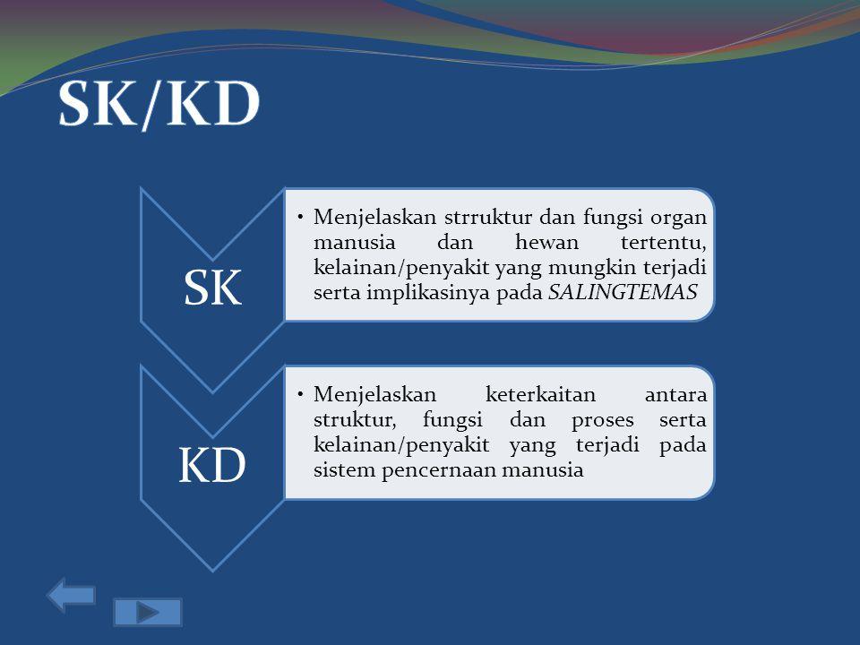 SK/KD SK.