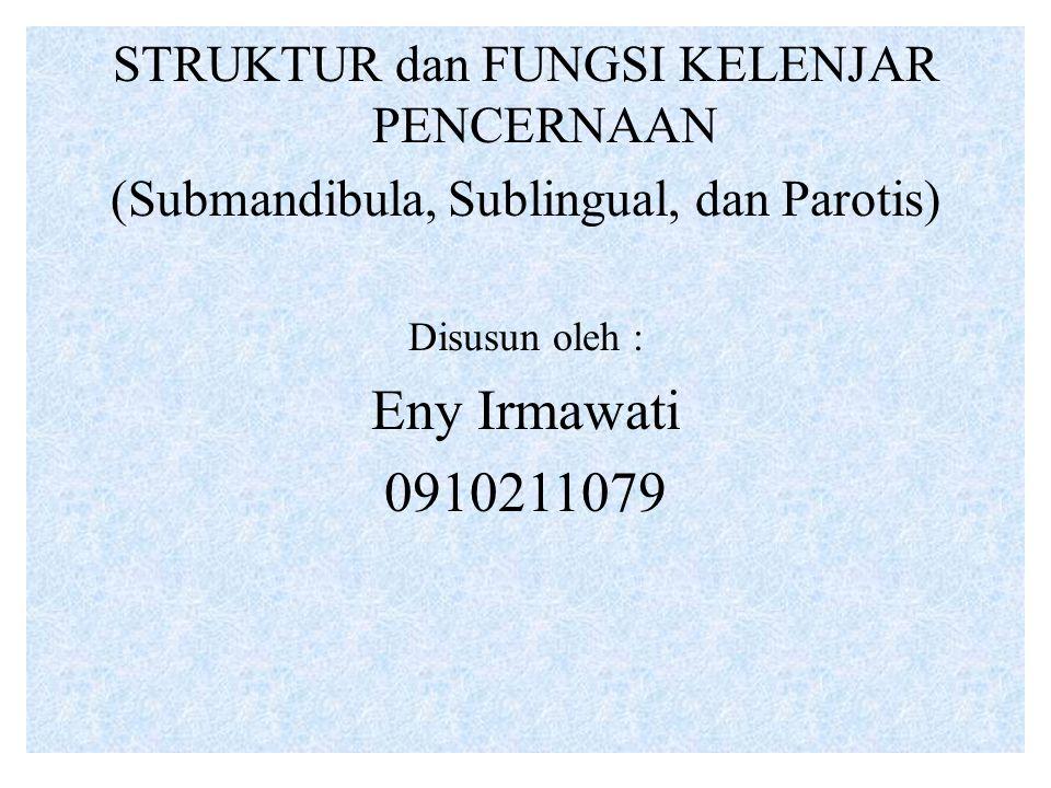 Eny Irmawati 0910211079 STRUKTUR dan FUNGSI KELENJAR PENCERNAAN