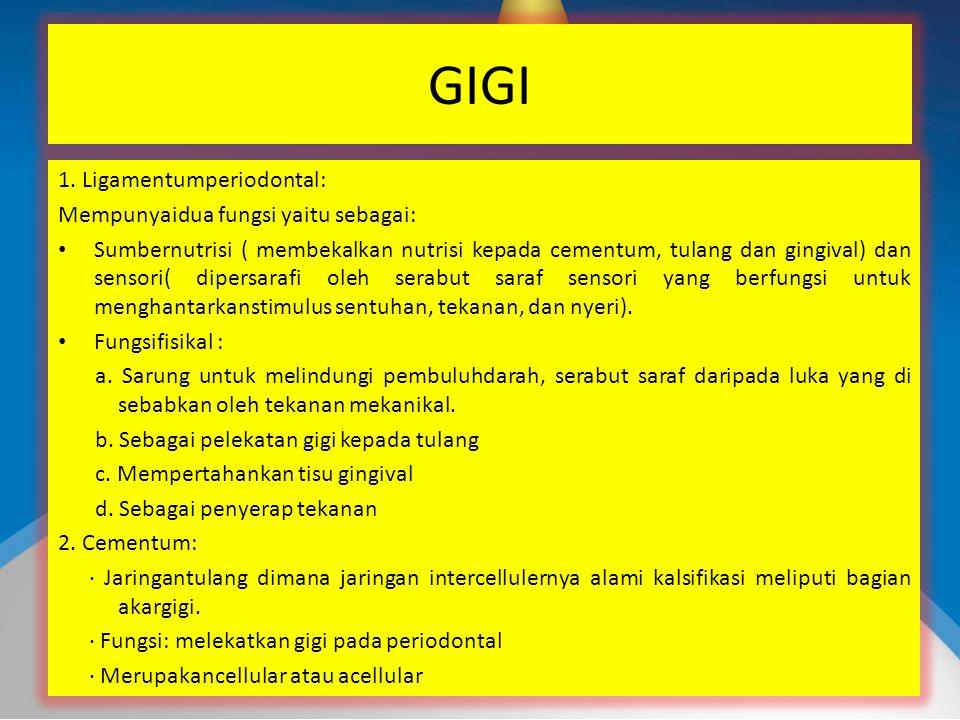 GIGI 1. Ligamentumperiodontal: Mempunyaidua fungsi yaitu sebagai: