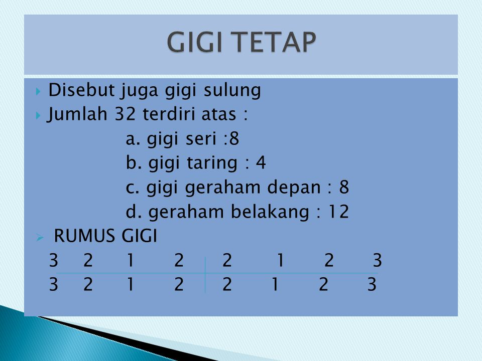 GIGI TETAP Disebut juga gigi sulung Jumlah 32 terdiri atas :