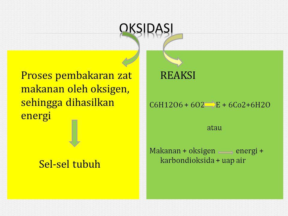 OKSIDASI Proses pembakaran zat makanan oleh oksigen, sehingga dihasilkan energi Sel-sel tubuh REAKSI.