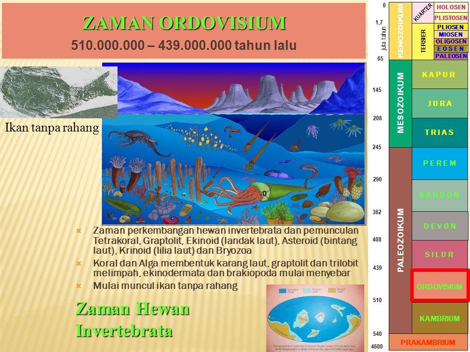 ZAMAN ORDOVISIUM Zaman Hewan Invertebrata