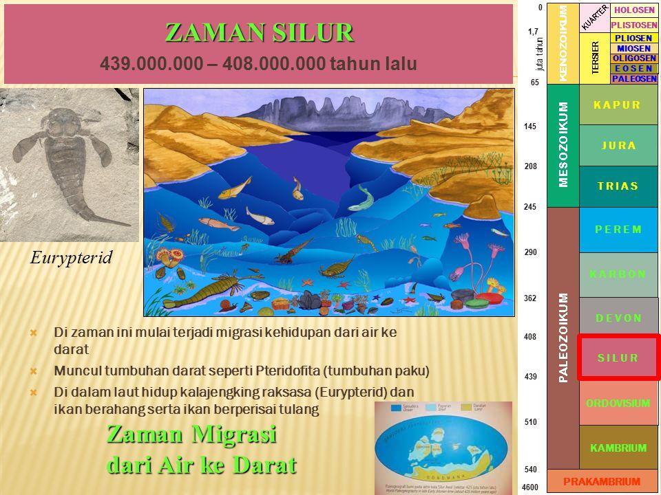 ZAMAN SILUR Zaman Migrasi dari Air ke Darat