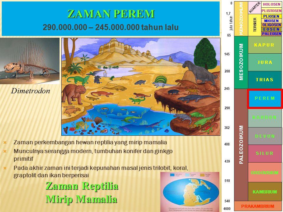 ZAMAN PEREM Zaman Reptilia Mirip Mamalia