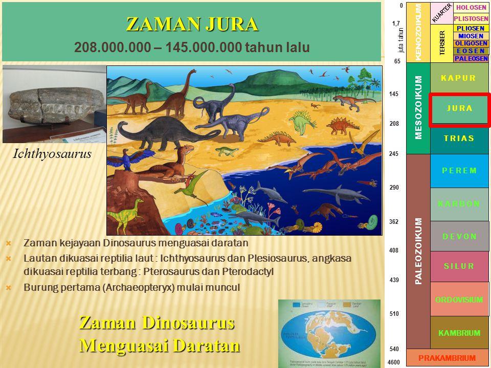 ZAMAN JURA Zaman Dinosaurus Menguasai Daratan