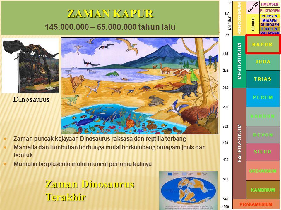 ZAMAN KAPUR Zaman Dinosaurus Terakhir