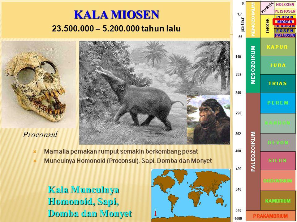 KALA MIOSEN Kala Munculnya Homonoid, Sapi, Domba dan Monyet