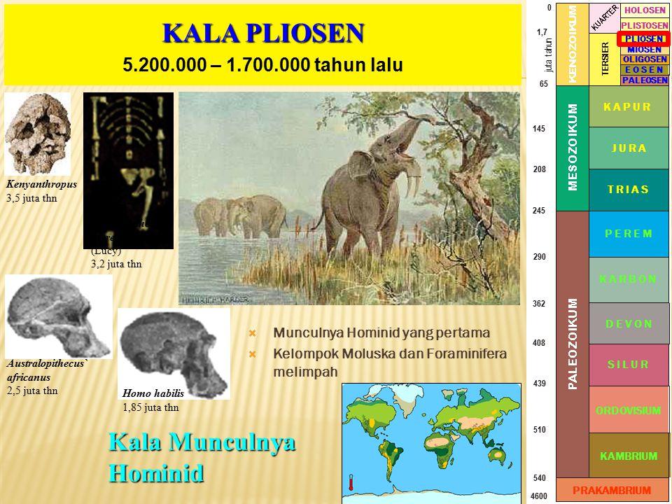 KALA PLIOSEN Kala Munculnya Hominid 5.200.000 – 1.700.000 tahun lalu