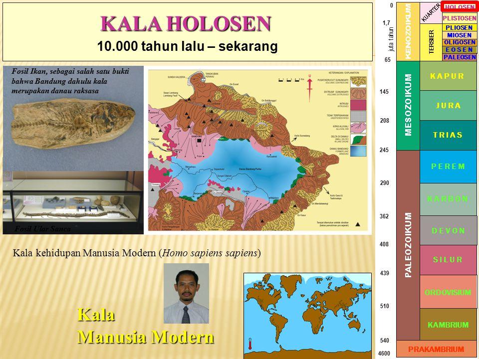 KALA HOLOSEN Kala Manusia Modern 10.000 tahun lalu – sekarang