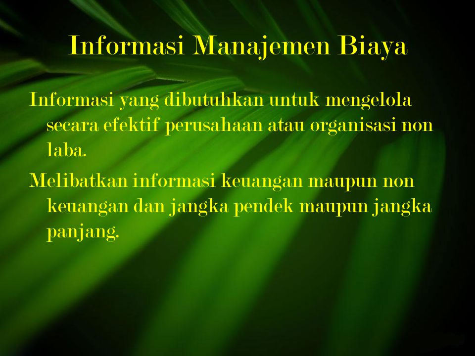 Informasi Manajemen Biaya