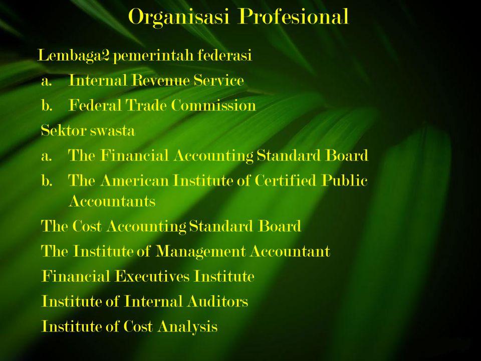 Organisasi Profesional