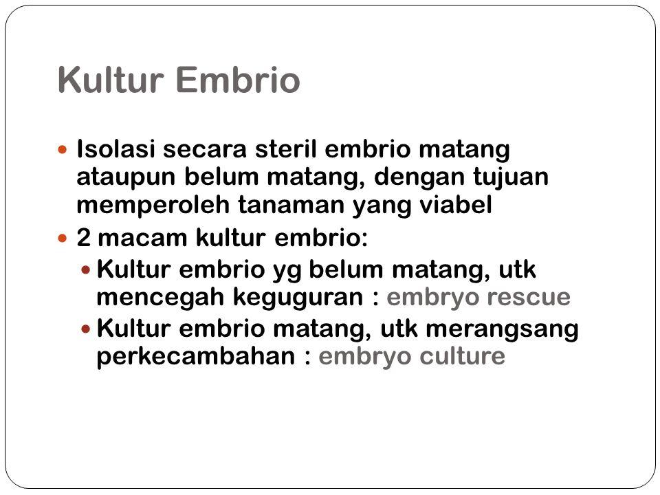 Kultur Embrio Isolasi secara steril embrio matang ataupun belum matang, dengan tujuan memperoleh tanaman yang viabel.