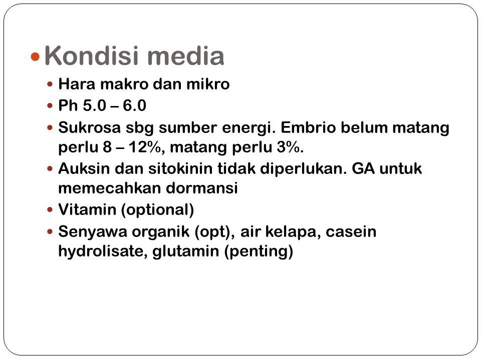 Kondisi media Hara makro dan mikro Ph 5.0 – 6.0